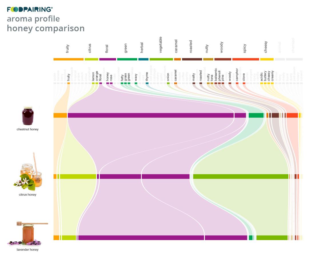 https://www.foodpairing.com/app/uploads/2020/06/templates-blog-newsletter_cabbage_ig-copy-2.jpg