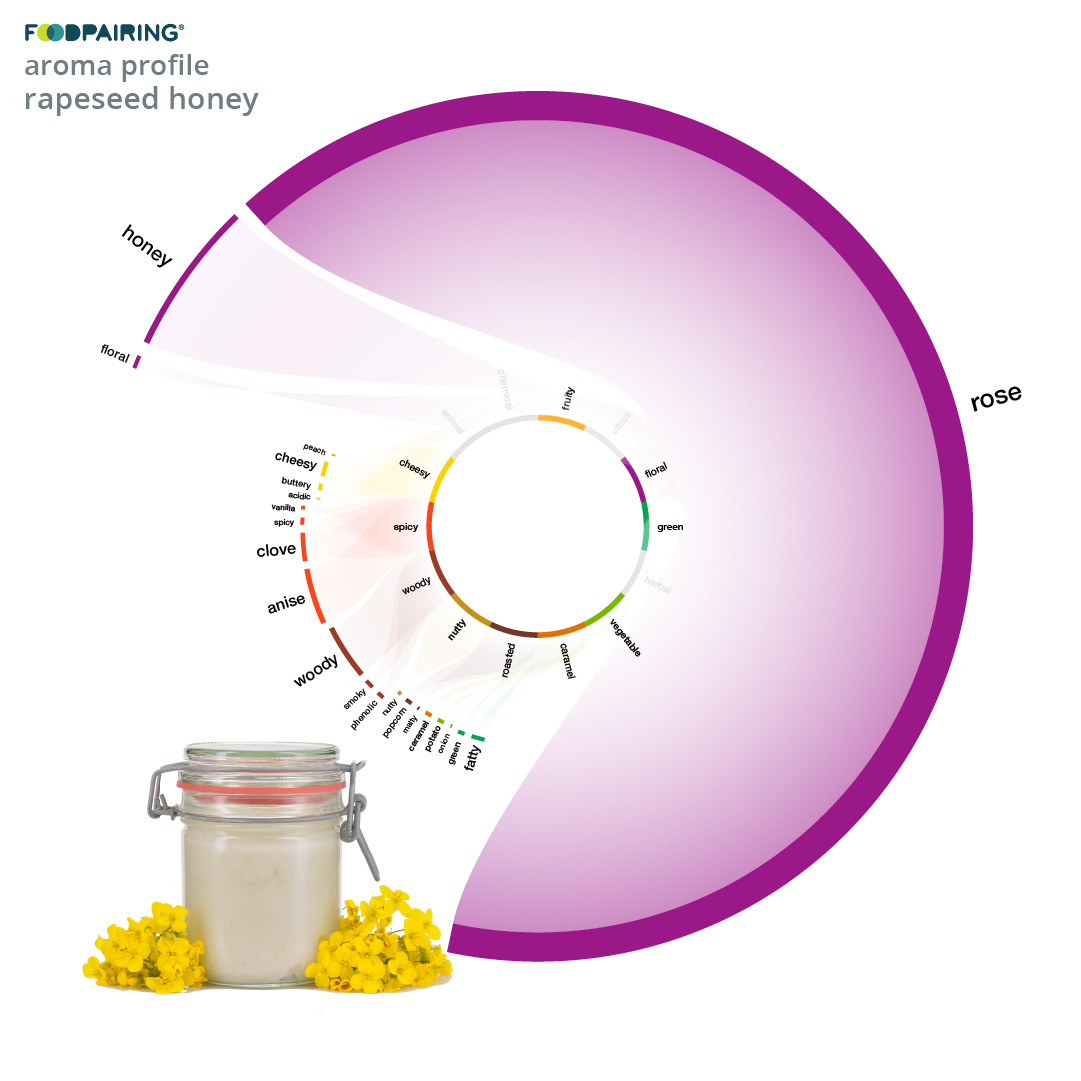https://www.foodpairing.com/app/uploads/2020/06/templates-blog-newsletter_cabbage_ig-copy.jpg