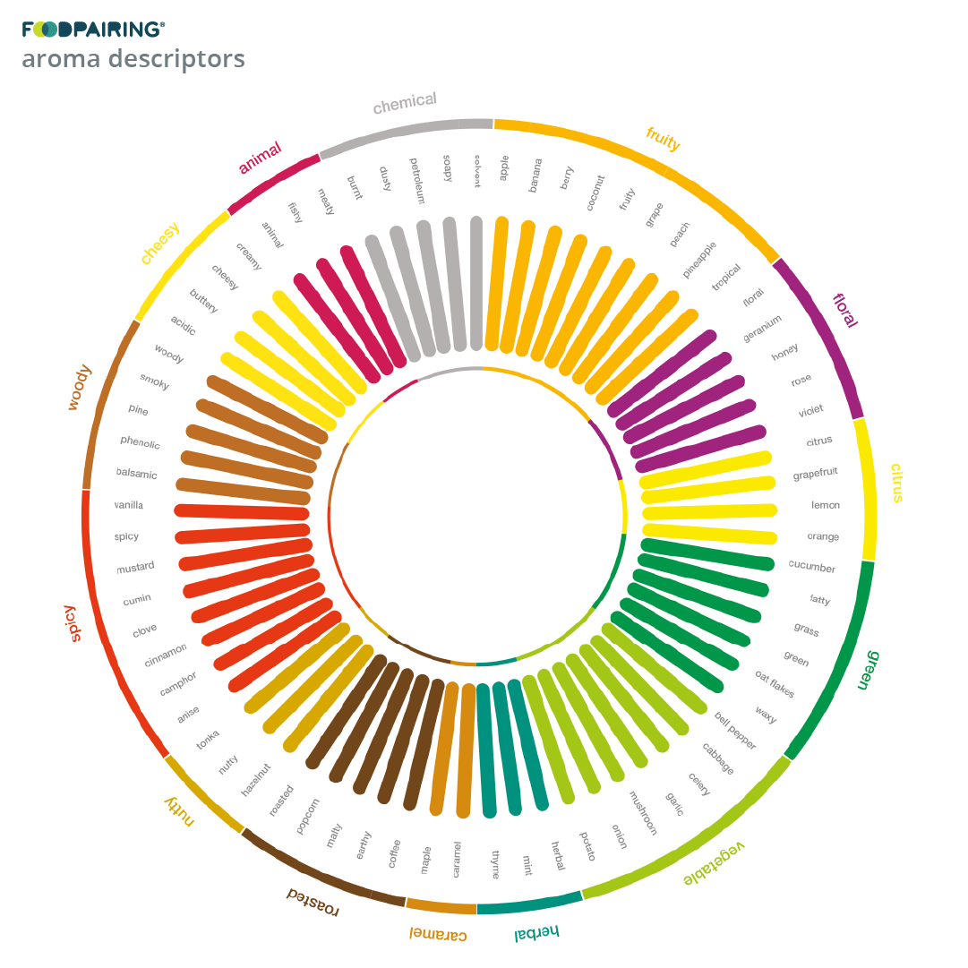 https://www.foodpairing.com/app/uploads/2020/11/oktober-blogai_cabbage_ig-copy-3.png