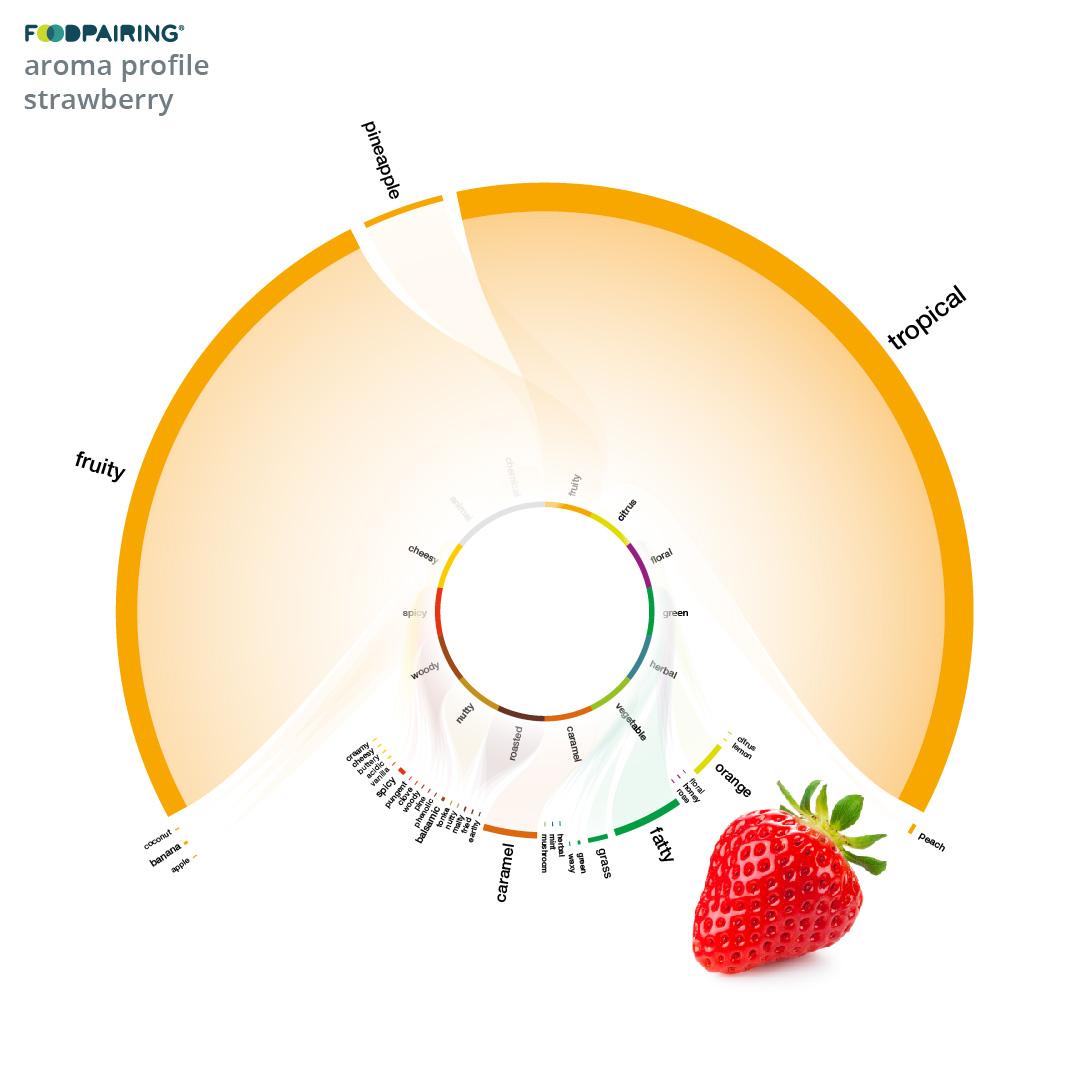 https://www.foodpairing.com/app/uploads/2020/11/oktober-blogai_cabbage_ig-copy-5.jpg
